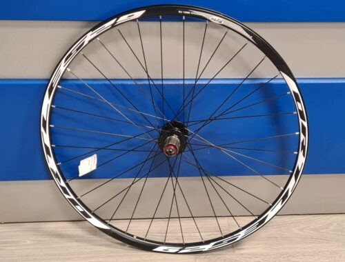 RUOTA CICLO POSTERIORE ORTLES MTB 29 BYTE
